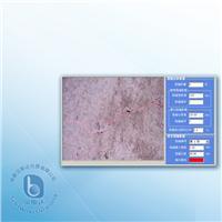 遠距離裂縫檢測系統 PTS-S30