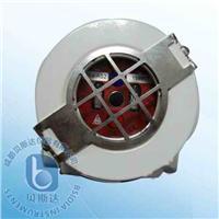 氢火焰探测器 SS4-AS