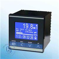 可编程序记录调节仪  BT8059