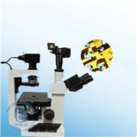 倒置式生物显微镜 XSP-17CZ