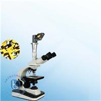 生物顯微鏡 XSP-12CZ