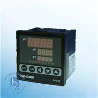 P900F系列 位置反馈比例马达控制器 P900F系列 位置反馈比例马达控制器