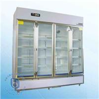 藥品冷藏箱 YY-1200