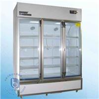 藥品冷藏箱 YY-800