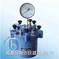 直读式混凝土含气量测定仪 CA-3型
