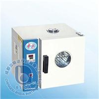 電熱恒溫干燥箱 202系列