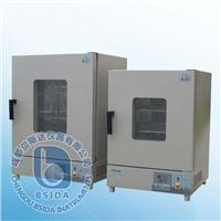 數顯電熱干燥箱 202A-0