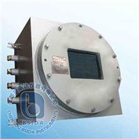 红外线气体分析仪 IRME-Ex
