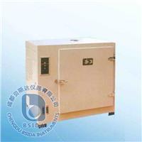 电热干燥箱 202系列
