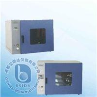 电热恒温鼓风干燥箱 DHG系列