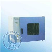 台式电热恒温鼓风干燥箱 DHG系列