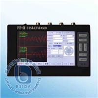 声波检测仪 PDS-SW