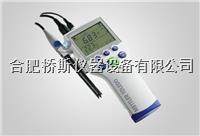 梅特勒SG2-FK快巧型便携式pH计12119302