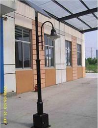3.5米太阳能庭院灯 TYD