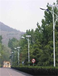 百色太陽能路燈 TYNLD
