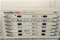 Spirent LAN-3310A 模块 Spirent LAN-3310A 模块