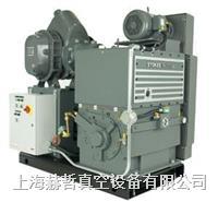 Stokes 1721 机械增压泵组合 Stokes真空泵