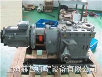 进口真空泵维修 上海真空泵维修 英国Edwards GV250 真空泵维修 GV250