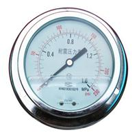 YN系列100ZT耐震压力表 100ZT