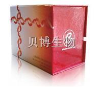 贝博生物BestBio   PKH67/PI双染细胞毒性检测试剂盒   BB-4215-500T  BB-4215-500T