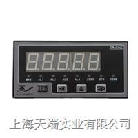 称重控制仪 多功能称重仪表 TA-5AE系列