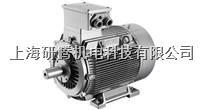 上海西門子電機 1LG4316-4AA60-Z