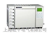 气相色谱仪 WP-9890