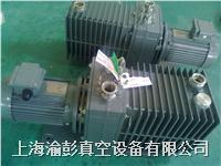 ALCATEL(阿爾卡特)2063C真空泵維修及銷售 2063C1