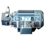 YBDZ-D10-CY,YBDZ-B20-CY,YBDZ-C20-CY,YBDZ-B20V3-CY,YBDZ-C20V3-CY,油泵电机组