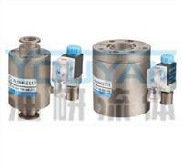DYC-Q40,DYC-Q50,DYC-Q65,DYC-Q80,DYC-Q100,DYC-Q125,DYC-Q160,DYC-Q200,低真空电磁压差充气阀 DYC-Q40,DYC-Q50,DYC-Q65,DYC-Q80,DYC-Q100,DYC-Q125,