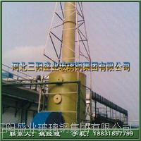 硫酸气净化塔厂家 BJS