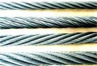 西安310不锈钢丝绳