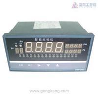 JXC-61A 智能数字巡回检测报警仪 JXC-61A