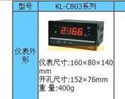 光柱显示控制仪 型号:HKL02-KL-C803