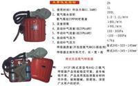 挎式负压氧气呼吸器(原AHG-2) 型号:FSHY-HY2F库号:M245968