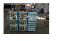 TESGC2 型系列三相电动调压器 TESGC2