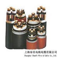 上海纯国标电缆120平方 优质电力电缆 供应高品质阻燃电力电缆价格
