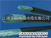 上海厂家CPU抗剪钢丝电缆 TRVV-UTP