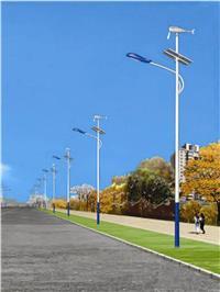 太阳能风光互补路灯