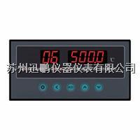 4-20mA八路温度巡检仪/迅鹏WPL8 WPL8