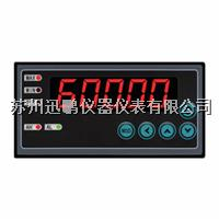 迅鹏WPE6-DM超高精度数显表 WPE6