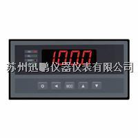 迅鹏WPHC-C手动操作器 WPHC