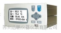 工业窑炉记录仪,温度无纸记录仪,迅鹏WPR21R WPR21R
