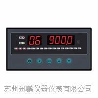 16路温度巡检仪|迅鹏WPL16-A WPL16