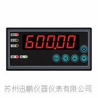 迅鹏WPE6-DM温度显示仪 WPE6