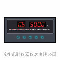 8通道温度巡检仪/迅鹏WPL8 WPL8