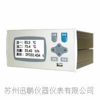 流量积算控制仪(迅鹏)WPR22FC WPR22FC