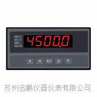 苏州迅鹏WPE温度显示仪 WPE