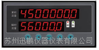 苏州迅鹏WPKJ-P1流量表 WPKJ