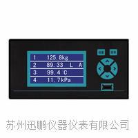 苏州迅鹏WPR10多通道无纸记录仪 WPR10
